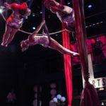 Chandelier Live Arts Gala 2015 - 707-L